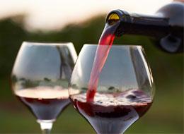Вино - лекарство для женщин